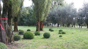 Le Jardin Ephémère
